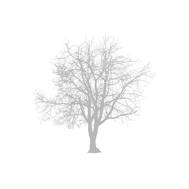 Servietter med træ 20 stk