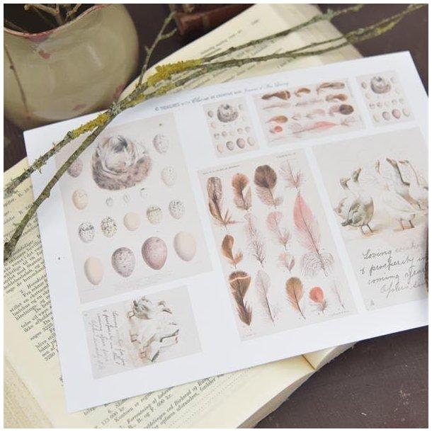 Ark med smukke påskemotiver kreative formål