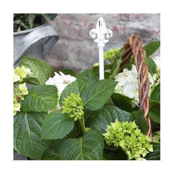 Plantespyd i jern med patina - 35 cm