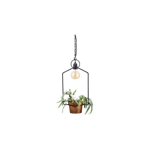 Lampe til dine krydderurter - urban gardening
